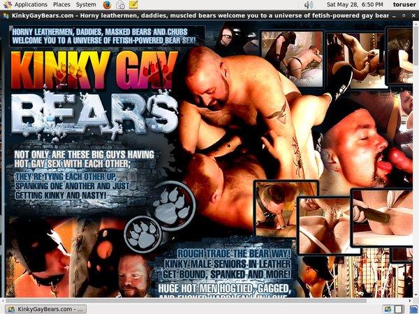 Kinky Gay Bears Con Deposito Bancario