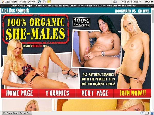 Organicshemales.com Member Passwords